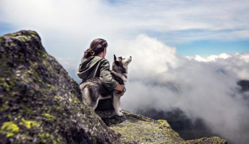 Be wild, be free. Grab your bag, bring your dog and let's go!